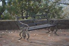 Bank in het park naast het bos stock afbeelding