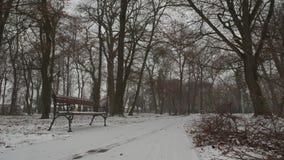 Bank in het sneeuwen stock videobeelden