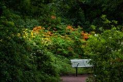 Bank im botanischen Garten lizenzfreies stockbild