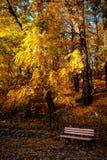 Bank im Herbstpark Stockbilder