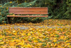 Bank im Herbstpark Lizenzfreie Stockfotos