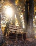 Bank im Herbstpark Stockfotos