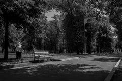 Bank im Park Stockbild