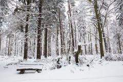 Bank im Winterwald lizenzfreies stockfoto