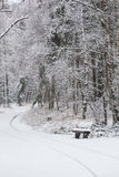 Bank im Winterwald lizenzfreies stockbild