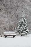 Bank im Winterwald stockfoto