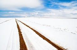 Bank jeziorny Namtso bank zakrywający z śniegiem Obrazy Royalty Free