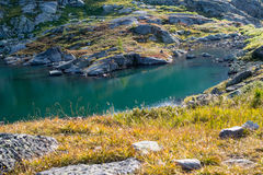 Bank of lake in the Altai mountains Stock Photo