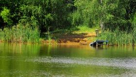 Bank lasowy jezioro Zdjęcie Royalty Free
