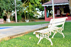 The bank on the lawn. The sun beating down on the bench located on the lawn near a swimming pool in a place of family on a winter afternoon Royalty Free Stock Photography