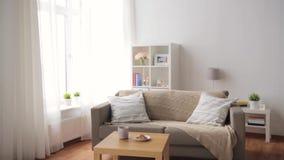Bank met kussens bij comfortabele huiswoonkamer stock footage