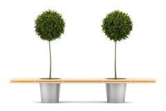 Bank met twee ingemaakte oranje geïsoleerdee bomen Royalty-vrije Stock Foto's