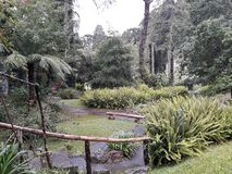 Bank in the middle of the nature of the garden. In Campos do Jordão royalty free stock photos
