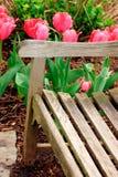 Bank mit Blumen lizenzfreies stockfoto