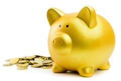 bank monety Świnka Obrazy Stock
