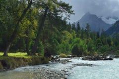 Bank of mountains river Stock Photos