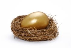 Bank nest. One gold egg in a nest on white background Stock Images