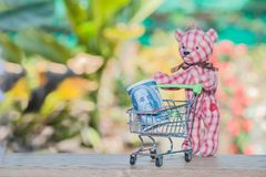 Bank note in shopping cart with bear toy. On wood Stock Photos
