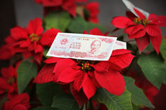 Bank note from Vietnam, Chinese new year offering on a flower Royalty Free Stock Photos