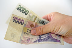 Bank-notes in white man hand. Pay bills with money. Currency concept. Czech crowns Royalty Free Stock Images
