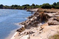 Free Bank Of The River Zambezi Stock Photos - 66871093