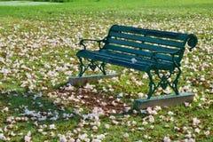 Bank om in het Park te ontspannen stock foto's