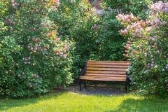 Bank onder de lilac struiken stock afbeelding