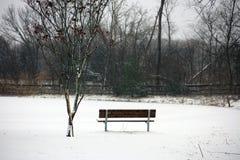 Bank onder sneeuw in koude de winter eenzame droevig van Michigan stock foto