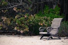 Bank op het strand Royalty-vrije Stock Foto