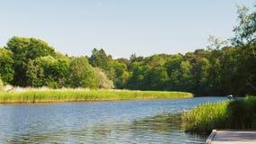 Bank op houten pijler bij meer of rivier in de zomer stock videobeelden