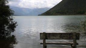 Bank på sjön stock video