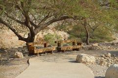 Bank in park van Ein Gedy Stock Afbeeldingen
