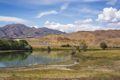 Bank of the river in Altai Mountains Royalty Free Stock Image