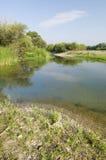 Bank of the river Ebro Royalty Free Stock Photos