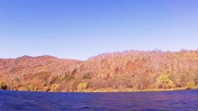 River Fast bank. The bank of the River Fast in Kamchatka with birch trees in fall stock footage