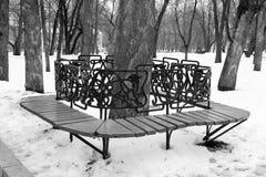 Bank rond een boom in een de winterpark royalty-vrije stock afbeelding