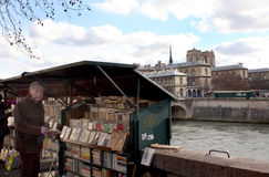 Bank of the Seine in Paris Royalty Free Stock Image