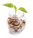 Bank, Sparschwein, Geld, Münzen Stockfoto