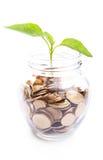 Bank, Sparschwein, Geld, Münzen Lizenzfreie Stockbilder