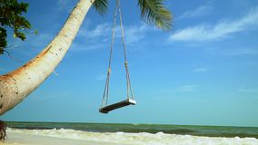 On the bank of the tropical island a swing hangs on a palm tree. Big swung shake on a palm tree against the background. On this video you can see as on the bank stock footage