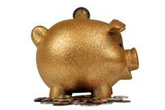 bank ukuwać nazwę złocistego prosiątko Obraz Stock