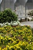 Bank und Blumen lizenzfreies stockbild