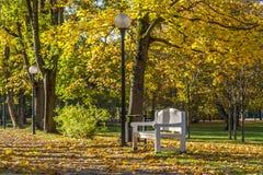 Bank und Laterne in Autumn Park Lizenzfreie Stockfotos