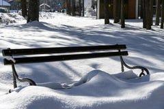 Bank und Schnee im Wald lizenzfreies stockbild