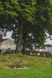 Bank unter Bäumen nahe Heilig-Jean-Gescheckt-De-Hafen, Frankreich stockbilder