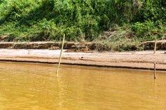 Bank van de rivier Nam Khan van riviernam khan in Luang Prabang, Laos Exemplaarruimte voor tekst stock foto's