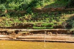 Bank van de rivier Nam Khan van riviernam khan in Luang Prabang, Laos Exemplaarruimte voor tekst stock afbeeldingen