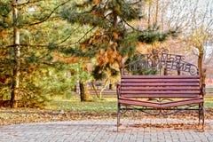Bank van verzoening in het Park stock afbeeldingen