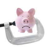 Bank vice Stock Photography