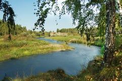 banka brzozy osamotniona rzeka Fotografia Royalty Free